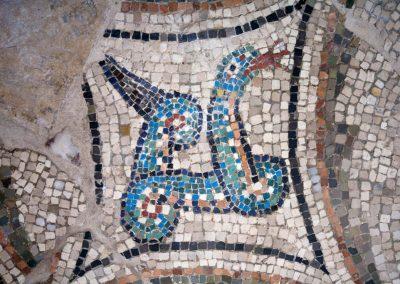 cripta-rasponi-particolare-pavimento-musivo-san-severo