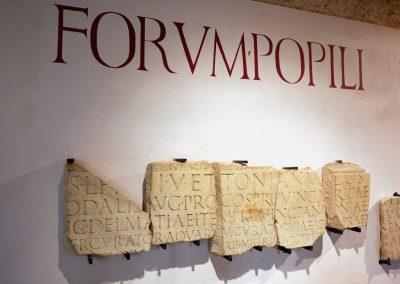 maf-museo-archeologico-forlimpopoli-17