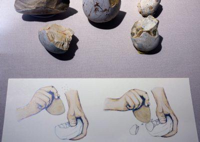 maf-museo-archeologico-forlimpopoli-22