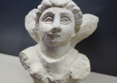 maf-museo-archeologico-forlimpopoli-29