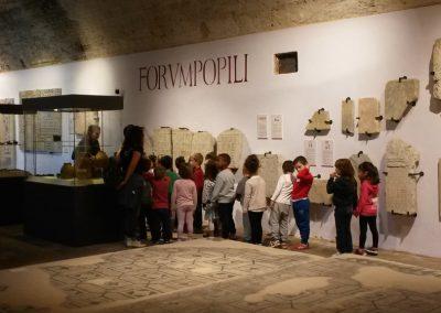maf-museo-archeologico-forlimpopoli-38