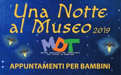 Una Notte al Museo 2019